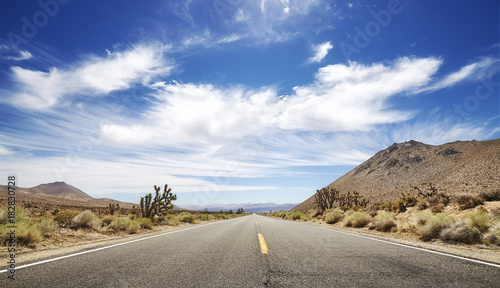 Endless road, travel concept, USA