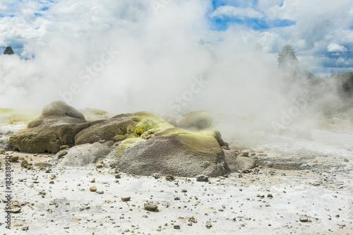 Plexiglas Fyle Geothermal area at Whakarewarewa