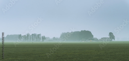 Plexiglas Blauwe hemel Misty dutch rural landscape with trees and ruined house on horizon.