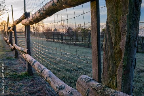 Plexiglas Zonsopgang fenced in fields
