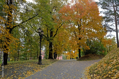 Foto op Canvas Moskou Alley in the Park in Autumn