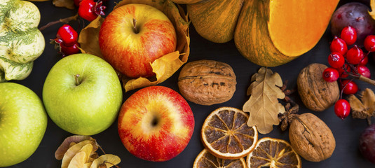Autumn harvest with apples,pumpkins, squash, plums and chestnuts , top view