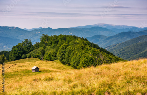 Foto op Canvas Honing shed near the forest on a grassy slope. beautiful summer landscape in Carpathian mountains. Polonina Krasna mountain ridge is seen in a far distance