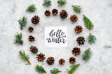 Hello winter hand lettering. Winter pattern with pinecones and spruce branch on grey background top view - 182876553