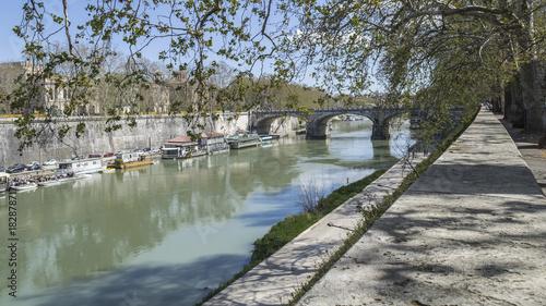 Tuinposter Rome Roma, fiume Tevere, ponte Regina Margherita