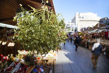mistletoe on sale in Barcelona, Spain