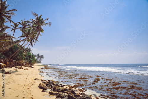 Foto op Canvas Tropical strand Landscape, coast of the Indian Ocean