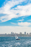 Yacht with Sydney cityscape on the background and plane in the sky - 182895773