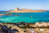 Spiaggia La Pelosa, Stintino, Sardegna - 182911986