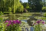 Les jardins de Claude Monet à Giverny en Normandie - 182938157