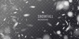 Fototapety Vector realistic snowfall against a dark background. Transparent elements for winter cards