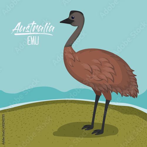 Fotobehang Boerderij australia emu poster with outdoor scene in colorful silhouette vector illustration