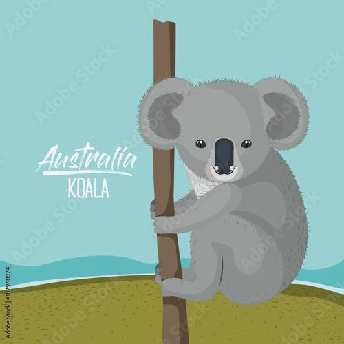 Fotobehang Zoo australia koala poster with outdoor scene in colorful silhouette vector illustration