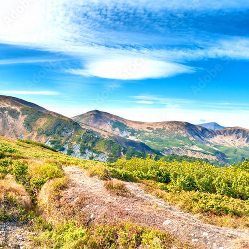 Fotobehang Lente Mountains landscape with forest