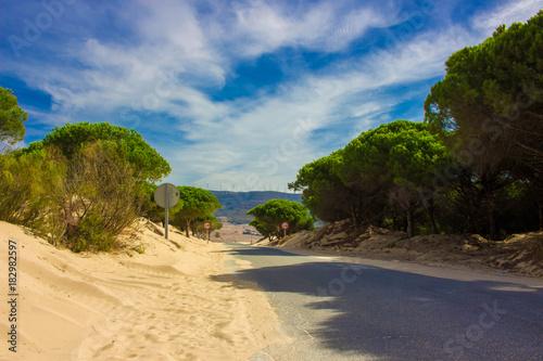 Foto op Plexiglas Tropical strand Road. White ocean sand, dunes. Punta Paloma beach, Tarifa, Spain.