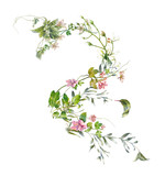 watercolor painting of leaves and flower, on white background - 182988175