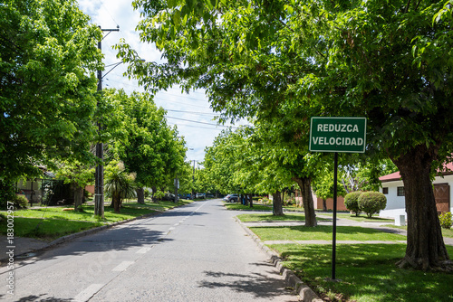 Street in residential area with road sign in Spanish meaning 'Slow down'