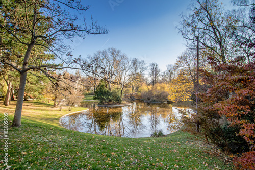Fotobehang Wenen Herbst in dem Türkenschanzpark in Wien, Österreich