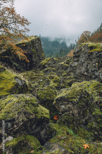 Fotobehang Bergrivier Mossy Mountain rocks warmer tone
