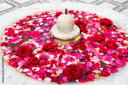 Decoration with red and pink roses floating in a fountain