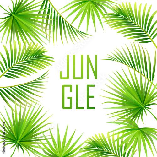Fototapeta tropical background. jungle. frame. vector illustration
