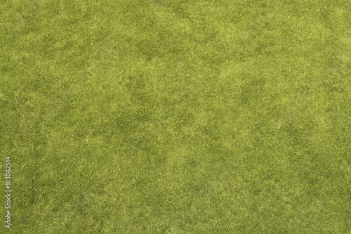 Foto op Aluminium Gras Grass Texture