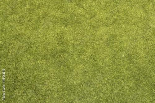 In de dag Gras Grass Texture