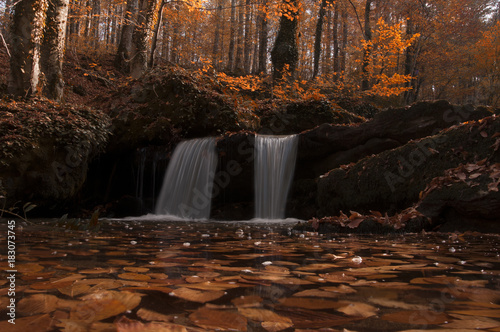 Autumn Forest and Small Waterfalls - 183073745