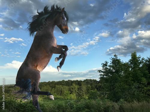 Plexiglas Paarden the horse goes on two legs