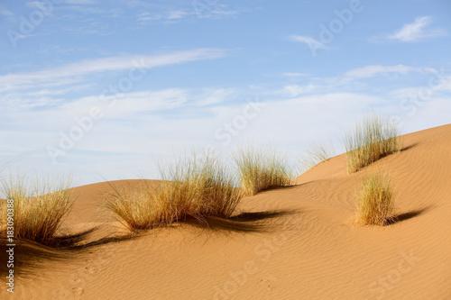 Le Maroc - 183090388