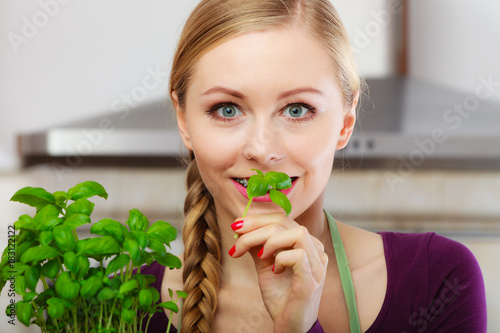 Poster Woman in kitchen with green fresh basil in pot