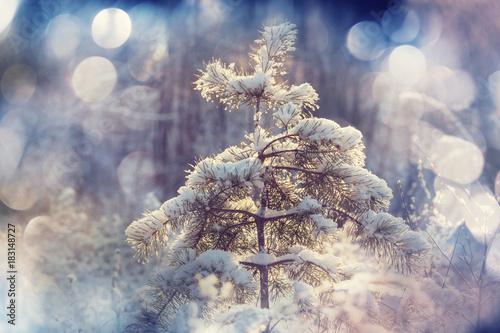 Aluminium Galyna A. Frozen tree