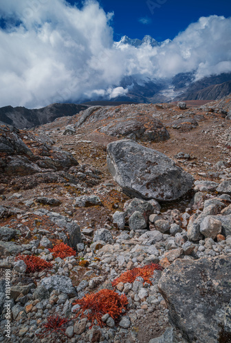 Foto op Plexiglas Diepbruine Peak covered with stones