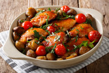 Spicy roast chicken with chestnuts, greens and tomatoes close-up in a dish. horizontal - 183151535
