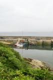 Fishing Boats moored on Bantry Bay, Wild Atlantic Way, Ireland - 183163770