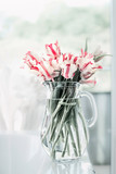 Lovely bunch of tulips in glass jug on white table at window. Flowers in interior design. Cozy home. Springtime - 183167946