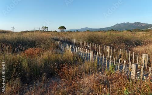 In de dag Blauwe hemel plaine du lido de la Marana en haute Corse
