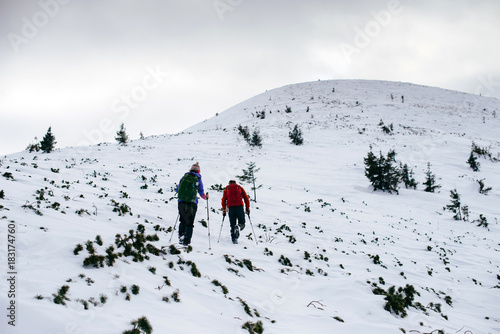 Two friends with backpacks hiking to the top of the mountain in the winter Carpa Poster