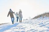 Glückliche Familie geht im Schnee spazieren - 183180130