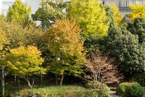 Sticker Kyu-Yasuda garden in autumn