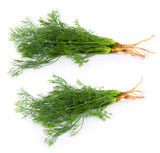 fresh dill on white background - 183197966