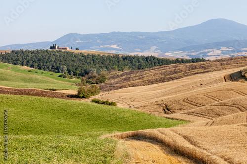 Foto op Canvas Toscane Val D'Orcia Hillside