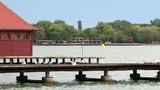 Seagulls stand on the pier Lake Palic landscape - 183229113