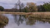 landscape of wetlands in autumn  - 183229777