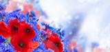 summer field flowers poppy and cornflower on blue defocused bokeh background banner