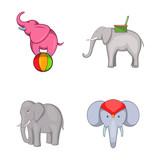 Elephant icon set, cartoon style