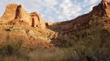 Desert flowers bloom amongst the red rocks along the Green River. - 183245367