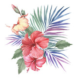 Composition with hibiscus and palm leaves. Hand draw watercolor illustration - 183260321