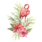 Flamingo with tropical flowers and leaf.Hand draw watercolor illustration. - 183260337
