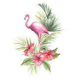 Flamingo with tropical flowers and leaf.Hand draw watercolor illustration. - 183260363